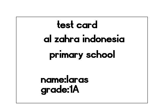LARAS2