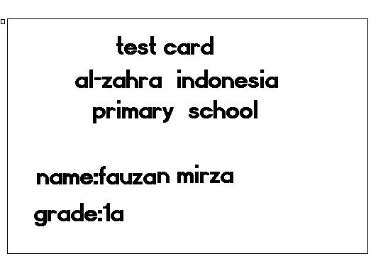 MIRZA2