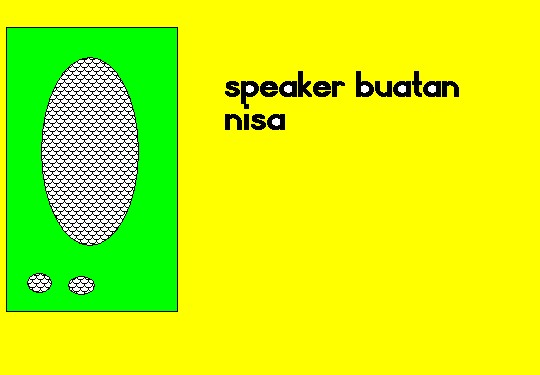 NISA8